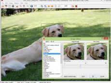 几款好用的图片浏览器工具,非常不错哦
